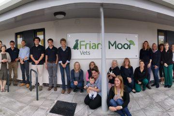 Friars Moor, vets, Shaftesbury
