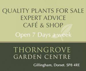 Thorngrove