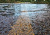 floods dorset